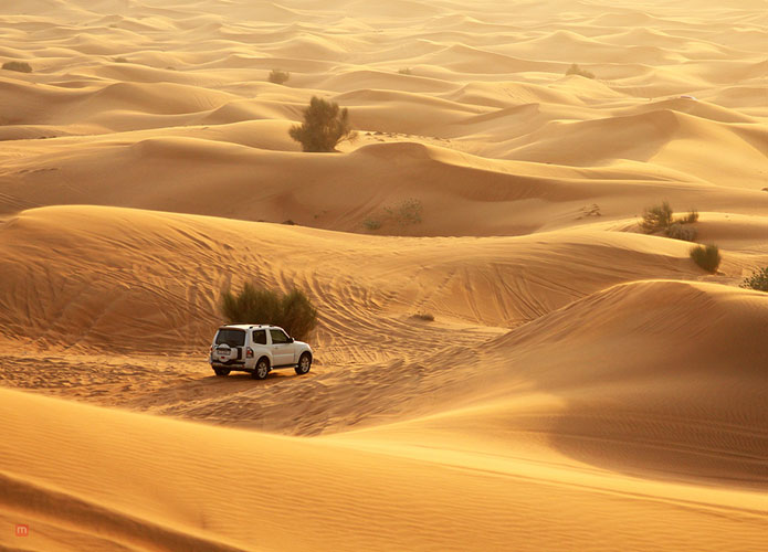 dining at the desert